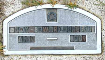 BREESE, ROY EDWARD - Dundy County, Nebraska | ROY EDWARD BREESE - Nebraska Gravestone Photos