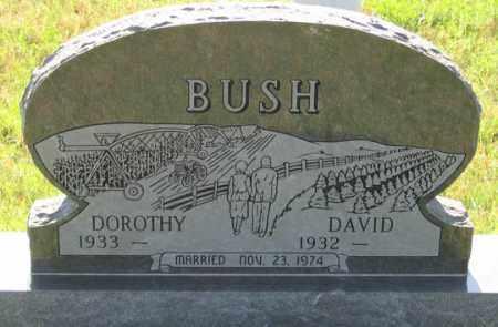 BUSH, DAVID - Dundy County, Nebraska   DAVID BUSH - Nebraska Gravestone Photos