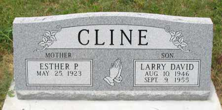 CLINE, LARRY DAVID - Dundy County, Nebraska | LARRY DAVID CLINE - Nebraska Gravestone Photos