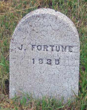 FORTUNE, JAMES WILLIAM ? - Dundy County, Nebraska | JAMES WILLIAM ? FORTUNE - Nebraska Gravestone Photos