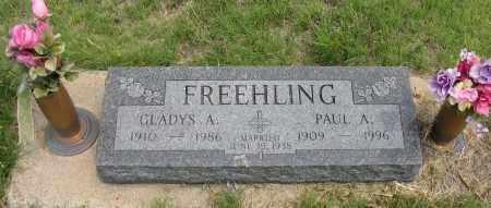 FREEHLING, PAUL A. JR. - Dundy County, Nebraska | PAUL A. JR. FREEHLING - Nebraska Gravestone Photos