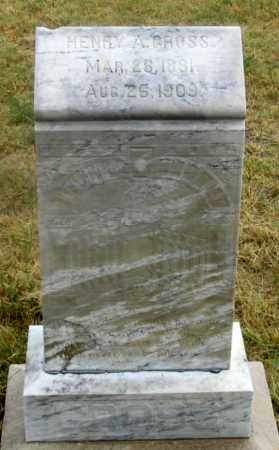 GROSS, HENRY ALEX - Dundy County, Nebraska | HENRY ALEX GROSS - Nebraska Gravestone Photos