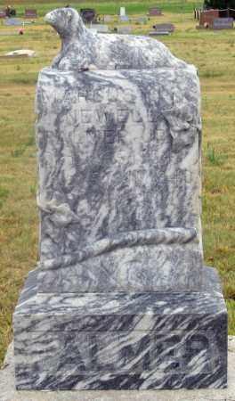 PALMER, MARCUS NEWELL JR. - Dundy County, Nebraska | MARCUS NEWELL JR. PALMER - Nebraska Gravestone Photos