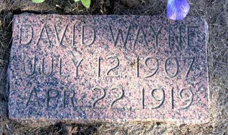 SMITH, DAVID WAYNE - Dundy County, Nebraska | DAVID WAYNE SMITH - Nebraska Gravestone Photos