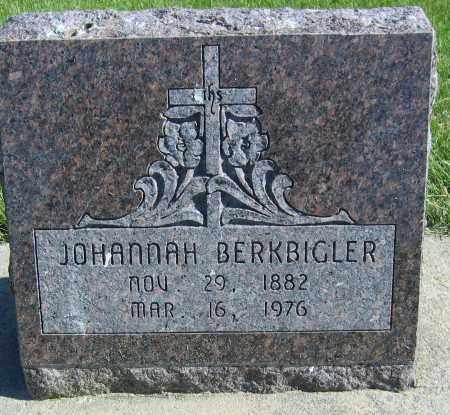 "STEFFGEN BERKBIGLER, ELIZABETH ""JOHANNAH"" - Fillmore County, Nebraska | ELIZABETH ""JOHANNAH"" STEFFGEN BERKBIGLER - Nebraska Gravestone Photos"