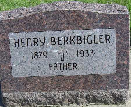 BERKBIGLER, HENRY - Fillmore County, Nebraska   HENRY BERKBIGLER - Nebraska Gravestone Photos