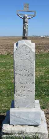 REINSCH, FRANZ - Fillmore County, Nebraska | FRANZ REINSCH - Nebraska Gravestone Photos