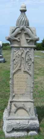 REINSCH, GEORGE - Fillmore County, Nebraska | GEORGE REINSCH - Nebraska Gravestone Photos