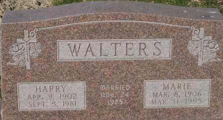 WALTERS, HARRY - Fillmore County, Nebraska | HARRY WALTERS - Nebraska Gravestone Photos