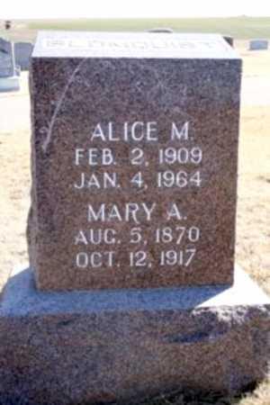 BLOMQUIST, ALICE M. - Frontier County, Nebraska | ALICE M. BLOMQUIST - Nebraska Gravestone Photos