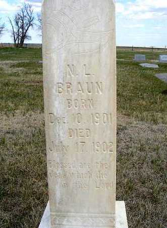 BRAUN, N. L. - Frontier County, Nebraska | N. L. BRAUN - Nebraska Gravestone Photos
