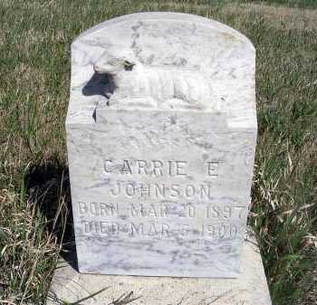 JOHNSON, CARRIE E. - Frontier County, Nebraska | CARRIE E. JOHNSON - Nebraska Gravestone Photos