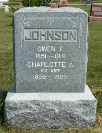 JOHNSON, OWEN F. - Frontier County, Nebraska | OWEN F. JOHNSON - Nebraska Gravestone Photos