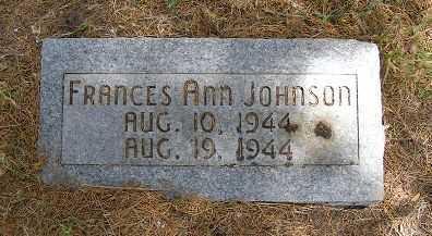 JOHNSON, FRANCES ANN - Frontier County, Nebraska | FRANCES ANN JOHNSON - Nebraska Gravestone Photos