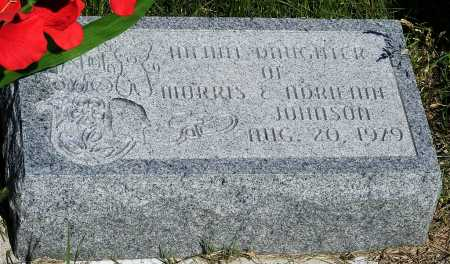 JOHNSON, INFANT DAUGHTER - Frontier County, Nebraska | INFANT DAUGHTER JOHNSON - Nebraska Gravestone Photos