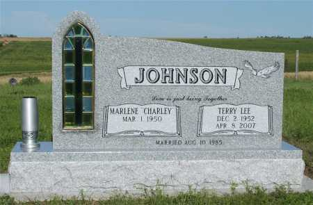 JOHNSON, TERRY LEE - Frontier County, Nebraska | TERRY LEE JOHNSON - Nebraska Gravestone Photos