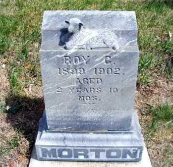 MORTON, ROY C. - Frontier County, Nebraska | ROY C. MORTON - Nebraska Gravestone Photos