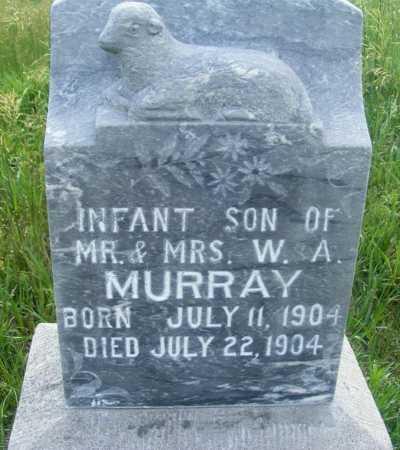 MURRAY, INFANT SON - Frontier County, Nebraska | INFANT SON MURRAY - Nebraska Gravestone Photos