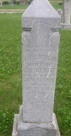 HOBSON, ALICE - Gage County, Nebraska | ALICE HOBSON - Nebraska Gravestone Photos