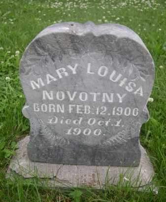 NOVOTNY, MARY LOUISA - Gage County, Nebraska | MARY LOUISA NOVOTNY - Nebraska Gravestone Photos