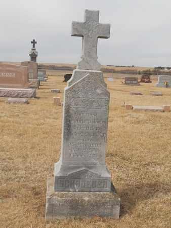 SCHROEDER, HEINRICH - Gage County, Nebraska | HEINRICH SCHROEDER - Nebraska Gravestone Photos