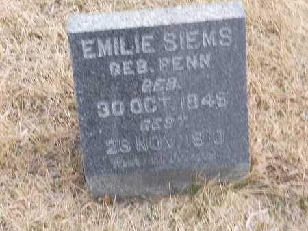 SIEMS, EMILIE - Gage County, Nebraska | EMILIE SIEMS - Nebraska Gravestone Photos