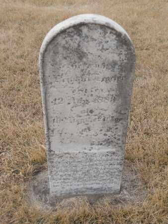 TEGELER, HEINRICH - Gage County, Nebraska | HEINRICH TEGELER - Nebraska Gravestone Photos