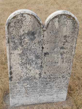 TEGELER, MINNA - Gage County, Nebraska | MINNA TEGELER - Nebraska Gravestone Photos