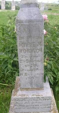 VOKACH, MARIE M. - Gage County, Nebraska   MARIE M. VOKACH - Nebraska Gravestone Photos