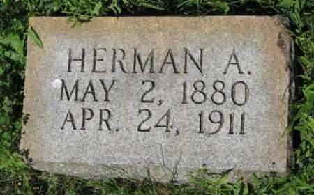 ANDERSEN, HERMAN A. - Hamilton County, Nebraska | HERMAN A. ANDERSEN - Nebraska Gravestone Photos
