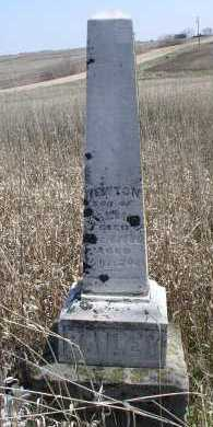 BAILEY, NEWTON - Jefferson County, Nebraska   NEWTON BAILEY - Nebraska Gravestone Photos