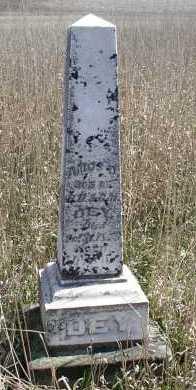 DEY, AMOS - Jefferson County, Nebraska | AMOS DEY - Nebraska Gravestone Photos