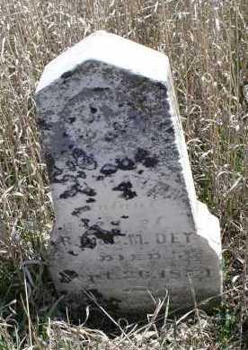 DEY, MARTIN - Jefferson County, Nebraska   MARTIN DEY - Nebraska Gravestone Photos