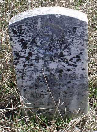 EVANS, CORA - Jefferson County, Nebraska | CORA EVANS - Nebraska Gravestone Photos