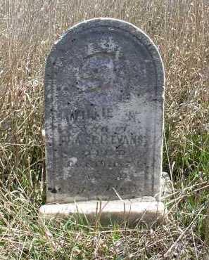 EVANS, WILLIE - Jefferson County, Nebraska | WILLIE EVANS - Nebraska Gravestone Photos