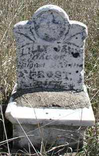 FROST, LILLY JANE - Jefferson County, Nebraska | LILLY JANE FROST - Nebraska Gravestone Photos