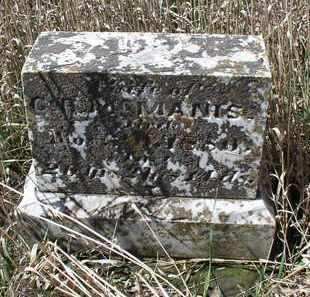 MCMANIS, SUSIE - Jefferson County, Nebraska | SUSIE MCMANIS - Nebraska Gravestone Photos