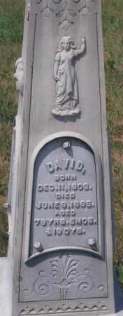 BLOOMFIELD, DAVID C. - Kearney County, Nebraska | DAVID C. BLOOMFIELD - Nebraska Gravestone Photos