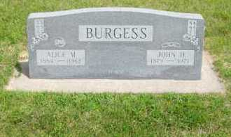 BURGESS, ALICE M. - Kearney County, Nebraska | ALICE M. BURGESS - Nebraska Gravestone Photos