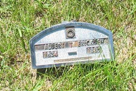 ERICKSON, ALBERT T. - Kearney County, Nebraska | ALBERT T. ERICKSON - Nebraska Gravestone Photos