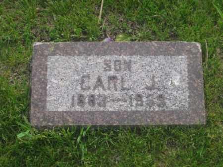 HOLMQUIST, CARL J. - Kearney County, Nebraska | CARL J. HOLMQUIST - Nebraska Gravestone Photos