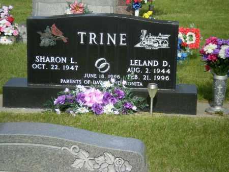 TRINE, LELAND - Kearney County, Nebraska | LELAND TRINE - Nebraska Gravestone Photos