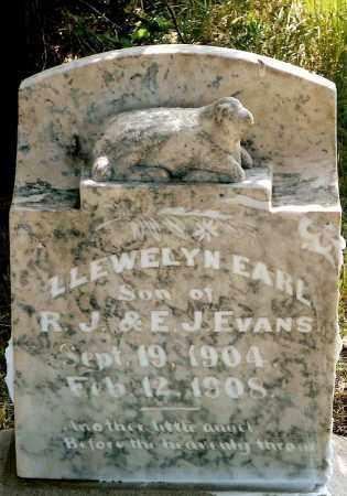 EVANS, LLEWELYN EARL - Keya Paha County, Nebraska | LLEWELYN EARL EVANS - Nebraska Gravestone Photos