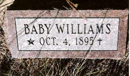 WILLIAMS, BABY - Keya Paha County, Nebraska | BABY WILLIAMS - Nebraska Gravestone Photos