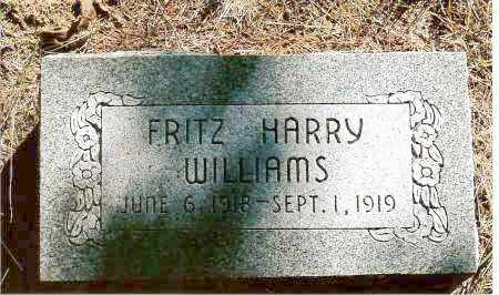 WILLIAMS, FRITZ HARRY - Keya Paha County, Nebraska | FRITZ HARRY WILLIAMS - Nebraska Gravestone Photos