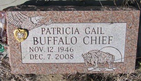 BUFFALO CHIEF, PATRICIA GAIL - Knox County, Nebraska | PATRICIA GAIL BUFFALO CHIEF - Nebraska Gravestone Photos