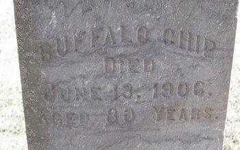 BUFFALO CHIP, (CLOSE UP) - Knox County, Nebraska | (CLOSE UP) BUFFALO CHIP - Nebraska Gravestone Photos