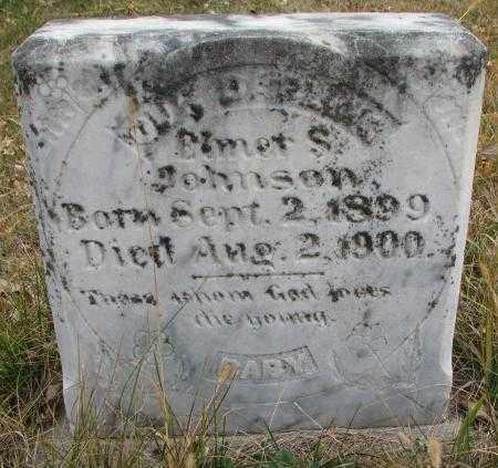 JOHNSON, ELMER S. - Knox County, Nebraska | ELMER S. JOHNSON - Nebraska Gravestone Photos