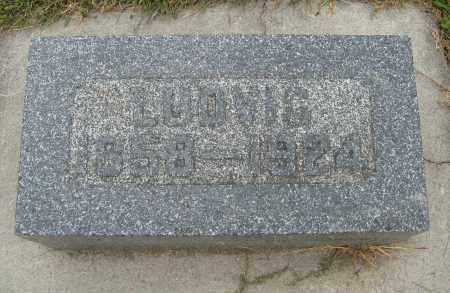 JOHNSON, LUDVIG - Knox County, Nebraska | LUDVIG JOHNSON - Nebraska Gravestone Photos