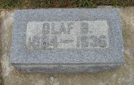 JOHNSON, OLAF B. - Knox County, Nebraska | OLAF B. JOHNSON - Nebraska Gravestone Photos
